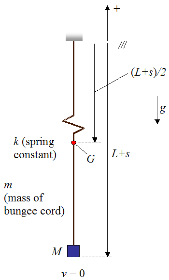 schematic to find maximum falling distance of bungee jumper using conservation of energy