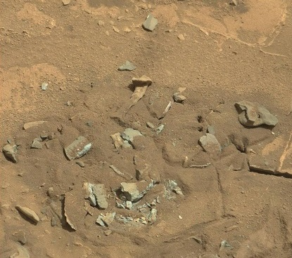 are aliens real mars thigh bone