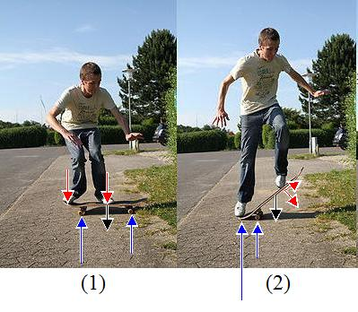 forces acting on the skateboard during the ollie