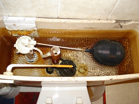 resonance in toilet tank