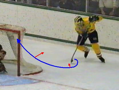 picture of lacrosse style move in hockey