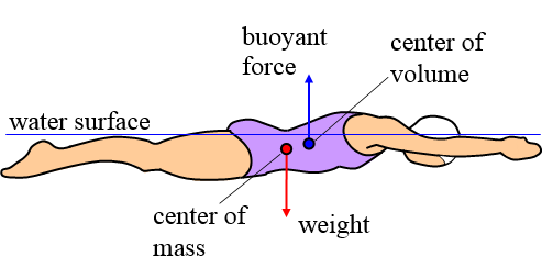 physics of swimming during floating